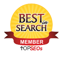 Top SEOs Best in Search